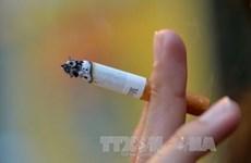 Alertan en Vietnam sobre consecuencias negativas del tabaquismo