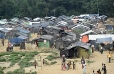 Myanmar crea comisión de indagación independiente sobre asunto de Rakhine