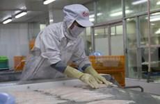 Siguen en tendencia alcista ventas de pescado Tra de Vietnam a Estados Unidos
