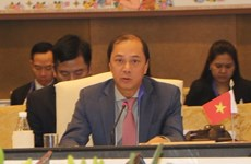 Vietnam participa activamente en Reunión de Altos Funcionarios de ASEAN