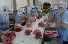 Vietnam se dirige hacia 10 mil millones de dólares por exportaciones de hortalizas en 2020