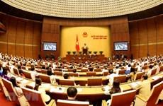 Parlamento de Vietnam analizará borradores legales sobre amnistía y educación