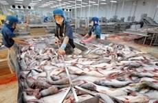 Piel de pescado, producto prometedor para exportación en Vietnam