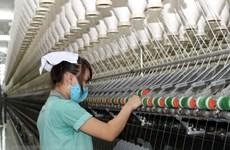 Construyen en Vietnam fábrica de hilados de lana de oveja