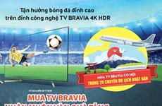 El mercado de televisores de Vietnam se calienta durante la Copa Mundial de Fútbol