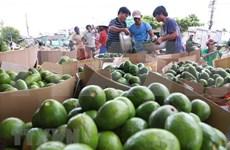 Productos agrícolas vietnamitas buscan ganar terreno en mercado tailandés