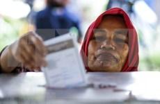 Indonesios convocados hoy a las urnas para comicios regionales