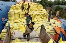 Vietnam importa 2,4 millones de toneladas de fertilizantes en primer semestre