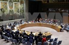 Vietnam participa en el Foro Político de Alto Nivel sobre Desarrollo Sostenible en Nueva York