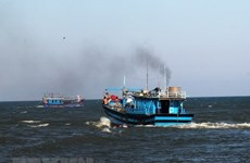 Aprueban ingreso de Vietnam a acuerdo de la FAO para desarrollo sostenible de la pesca