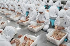 Analizan posible impacto en economía vietnamita de guerra comercial entre China y Estados Unidos