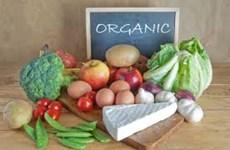 Indonesia aumenta exportaciones de productos orgánicos