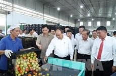 Premier vietnamita propone un modelo de desarrollo económico para Lam Dong
