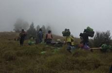 Indonesia trabaja para liberar a cientos de senderistas atrapados por terremoto