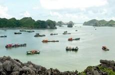 Ciudad portuaria vietnamita  Hai Phong dio la bienvenida a millones de viajeros hasta julio