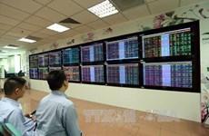Mercado de derivados en Vietnam mantiene alto ritmo de crecimiento