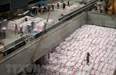 Tailandia exportará 11 millones de toneladas de arroz en 2018