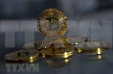 Entidades vietnamitas suspenden importación de equipos de minería de bitcoin