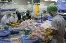 Exportación vietnamita de pescado Tra a la UE muestra signos de recuperación