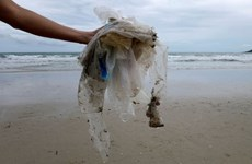 Tailandia prohibirá las importaciones de desechos peligrosos