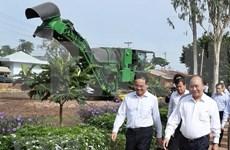 Premier de Vietnam visita modelos agrícolas de alta tecnología en Tay Ninh