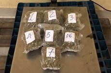 Incautan 57 kilogramos de metanfetamina traslada a través del aeropuerto Tan Son Nhat