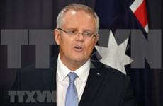 Premier de Australia viajará a Indonesia para salvar el TLC bilateral