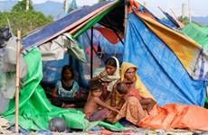 ONU llama a mayores esfuerzos para resolver crisis humanitaria en Myanmar