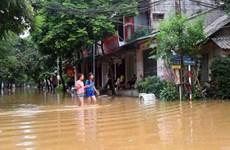 Inundaciones afectan más de 700 familias en provincia de Thanh Hoa