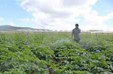 Vietnam asimila experiencias surcoreanas para construir nuevas zonas rurales