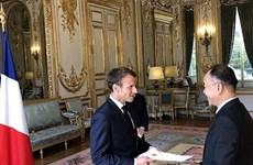 Presidente francés elogia el creciente papel de Vietnam en la arena internacional