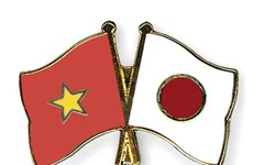 Transmitirá por televisión velada musical Vietnam- Japón