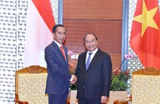 Premier de Vietnam se reúne con presidente indonesio Joko Widodo