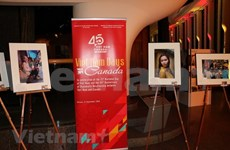 Realizan varias actividades en ultramar para conmemorar Día Nacional de Vietnam