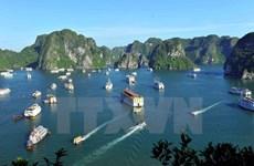 Impulsan crecimiento verde en la bahía de Ha Long