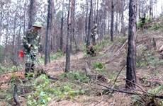 Vietnam y Corea del Sur cooperan para aliviar secuelas de bombas y minas de guerra