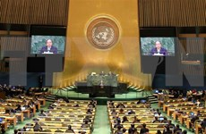 Vietnam apoya papel central de ONU en sistema multilateral, afirma Premier