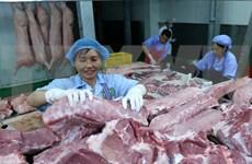 Provincia vietnamita de Quang Ninh adopta medidas drásticas contra peste porcina africana