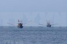 Vietnam perfecciona sistema legal de gestión costera tras 10 años de Estrategia Marítima