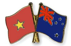 Promueven nexos entre Vietnam y Fuerza de Amistad Internacional