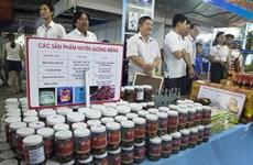 Expertos vietnamitas proponen medidas para desarrollar sector privado