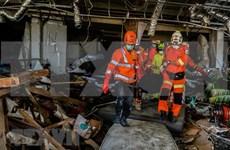 Suman casi dos mil los fallecidos tras sismo y tsunami en Indonesia