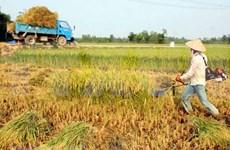 Comunidad de ASEAN hacia una agricultura creativa e innovadora
