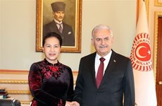 Vietnam y Turquía robustecen cooperación legislativa