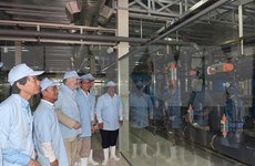 Inauguran mayor planta vietnamita de tratamiento de agua para sector camaronero