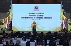 Vicepremier vietnamita exhorta a optimizar oportunidades para desarrollar agrosilvicultura en ASEAN