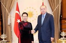 Presidente de Turquía afirma que su país aspira a firmar TLC con Vietnam ,