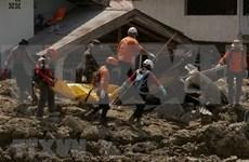 Samsung Electronics ofrece 600 mil dólares a Indonesia para aliviar secuelas de sismo