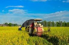 La FAO reconoce éxito de Vietnam en desarrollo económico