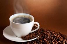 Café vietnamita consolida marca comercial en mercado chino